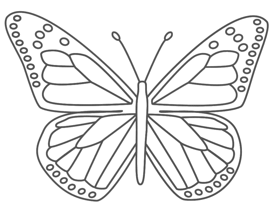 Monarch Butterfly - Coloring Page (