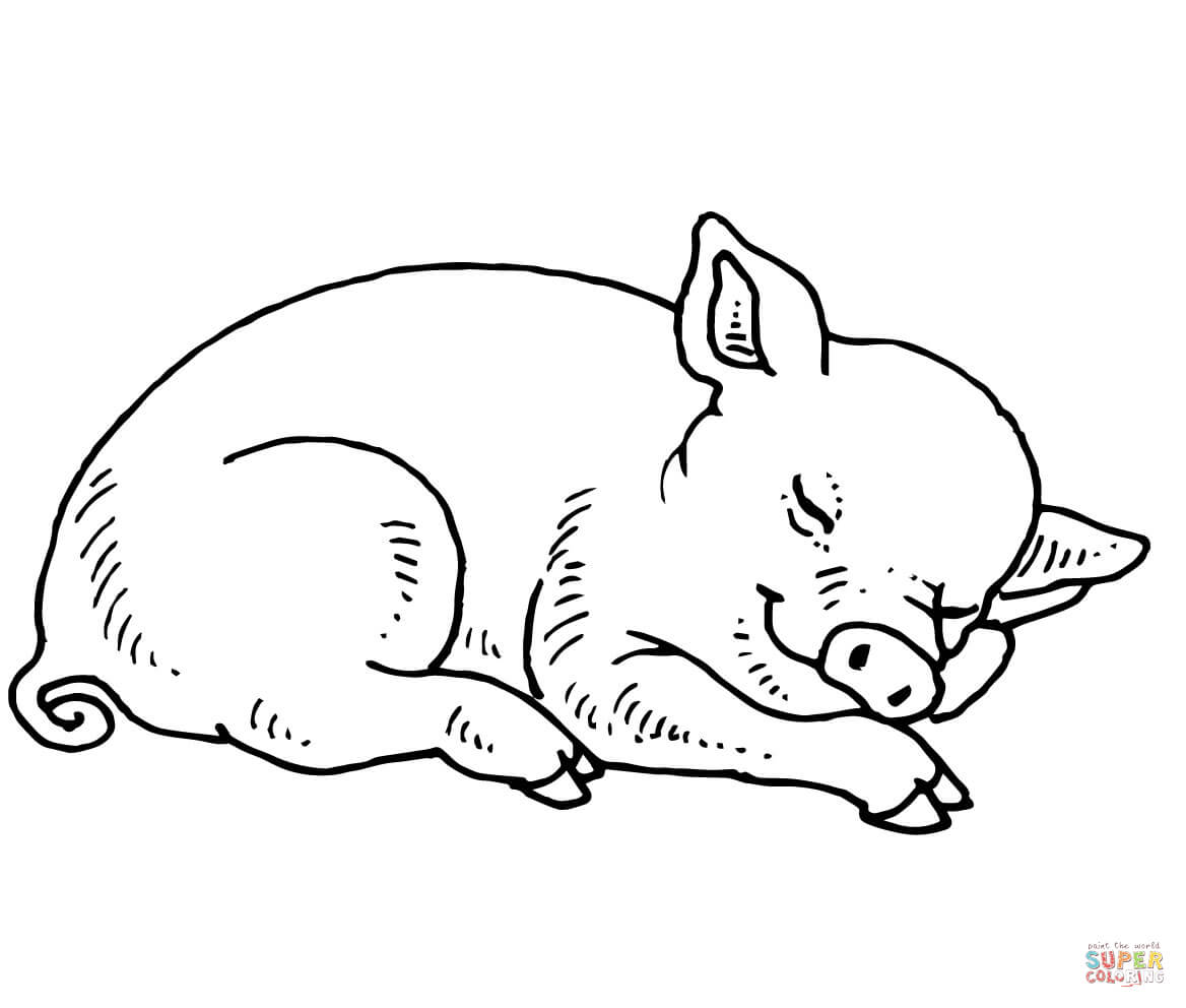 Cute Pigs Coloring Pages - Coloring Home