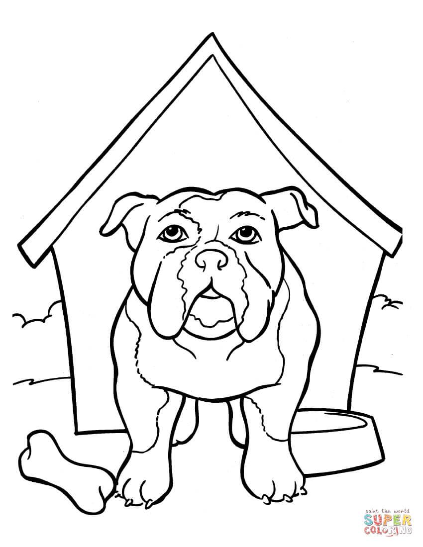 My Little Pony Kleurplaat Verjaardag Printable Bulldog Coloring Pages Coloring Home
