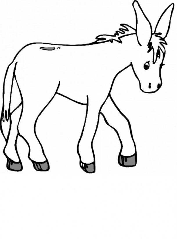 coloring pages donkey - donkeys coloring pages coloring home
