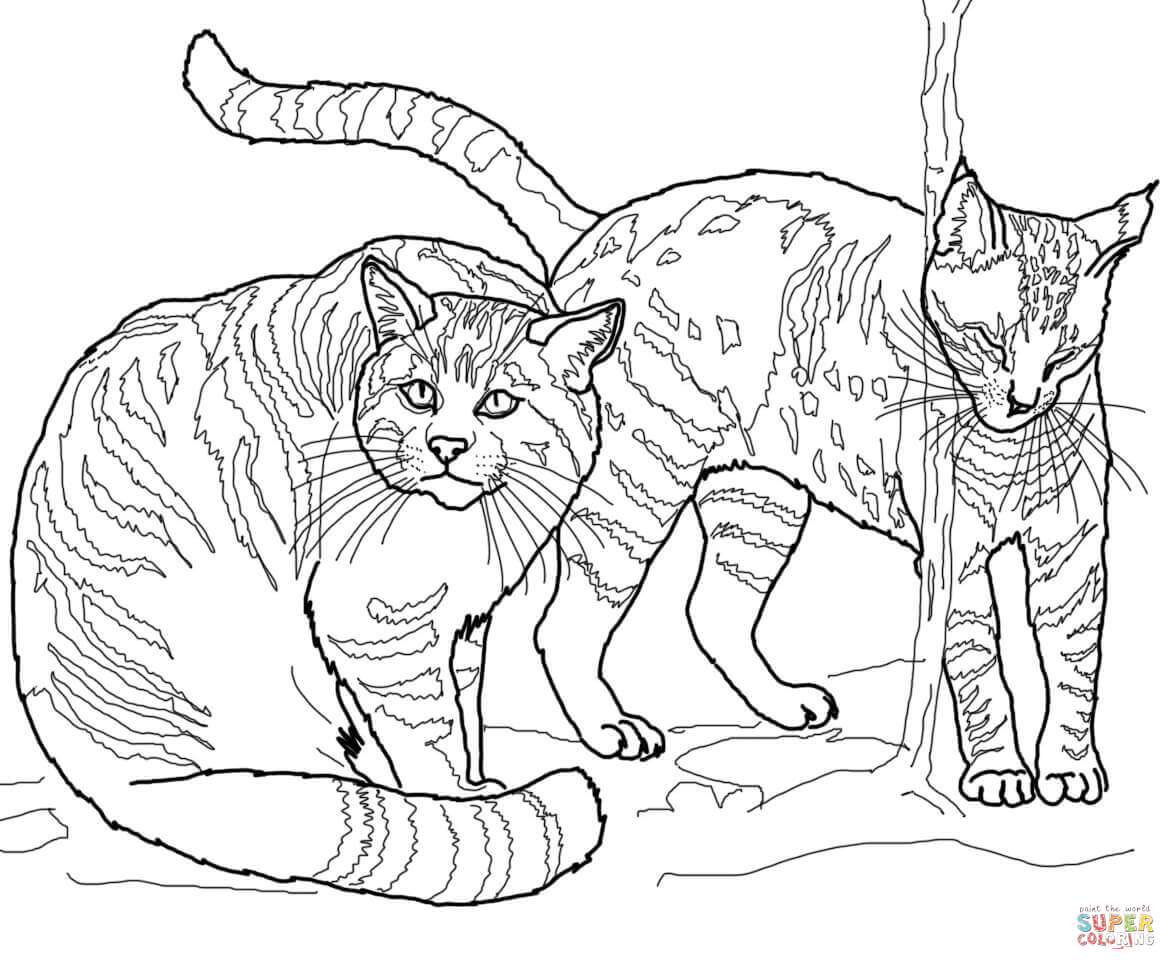 Clip Art Wildcat Coloring Page wildcat coloring pages az free pages