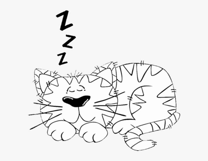 Cartoon Cat Sleeping Coloring Page - Cartoon Cats - Free Transparent PNG  Download - PNGkey