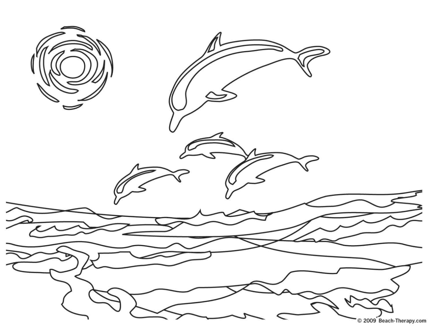 Free coloring pages dolphins - Adult