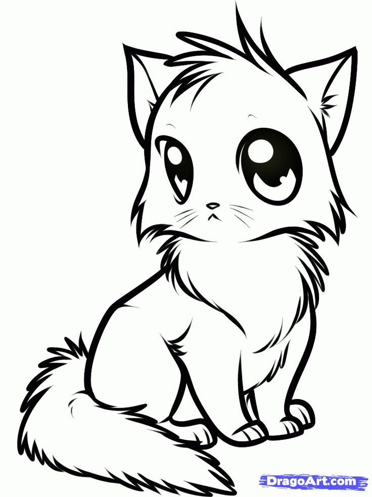 Cute Kittens Coloring Pages - Coloring Home