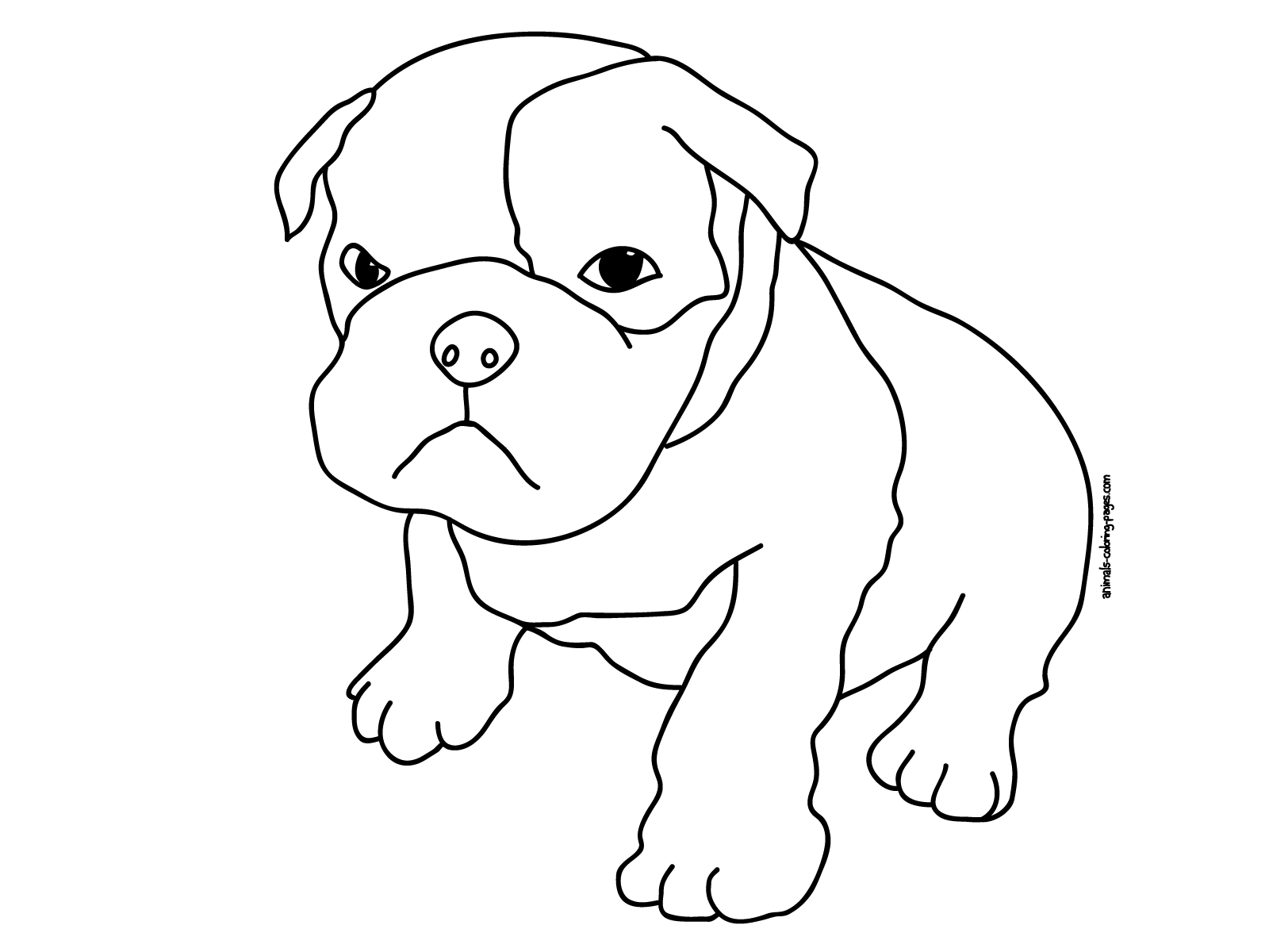 baby pitbull coloring pages american pitbull coloring pages kids - Pitbull Coloring Pages