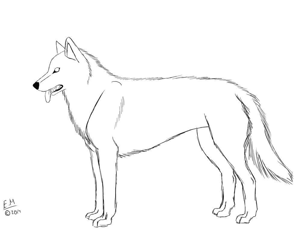 coloring pages huskys - photo#16