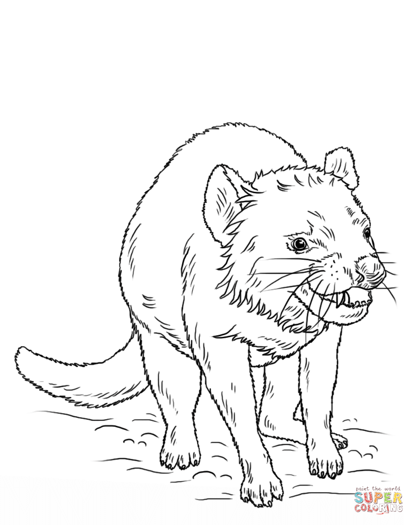 tazmanian coloring pages-#13