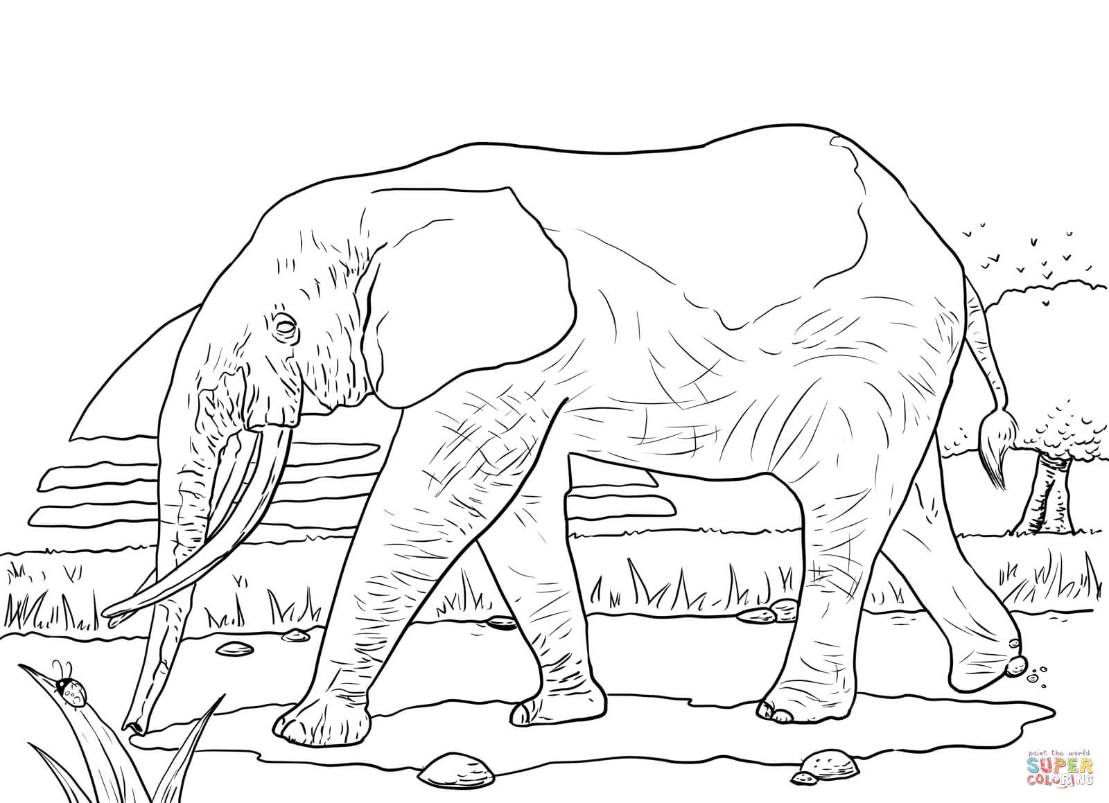12 Pics Of African Savanna Coloring Pages Preschool Grassland - African-savanna-coloring-pages