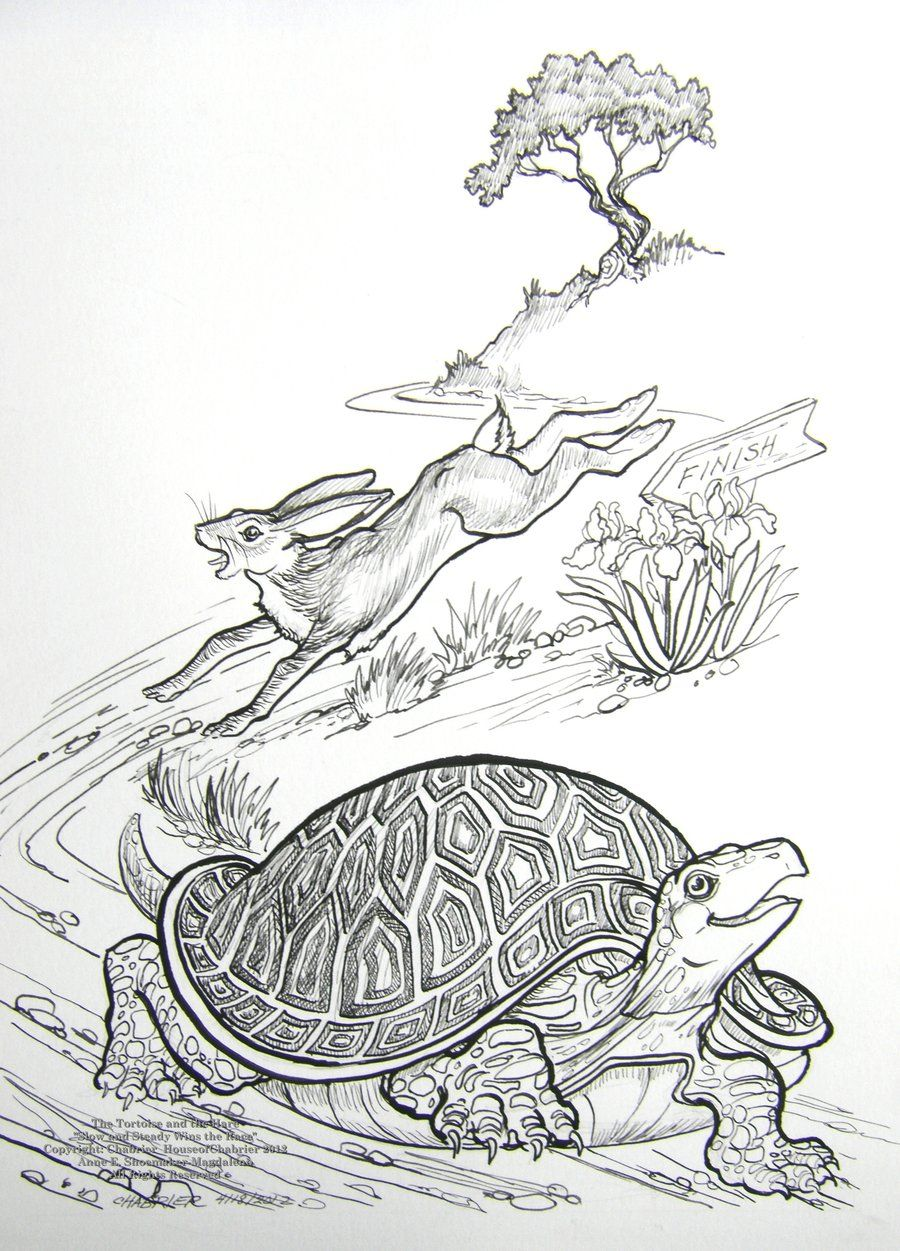 coloring pages turtle and hare - photo#17