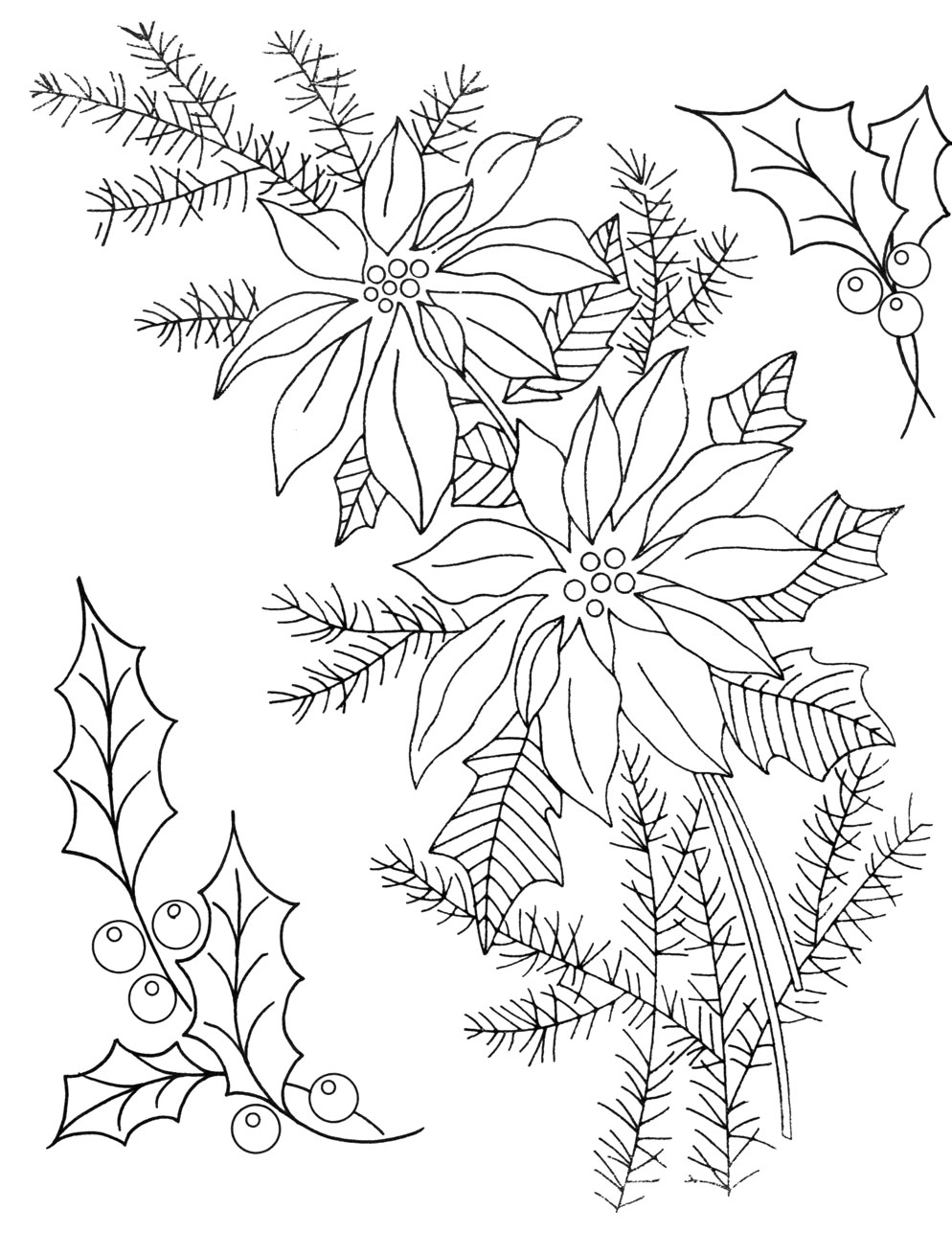 photo about Poinsettia Pattern Printable named Printable Poinsettia Behavior - Coloring Dwelling