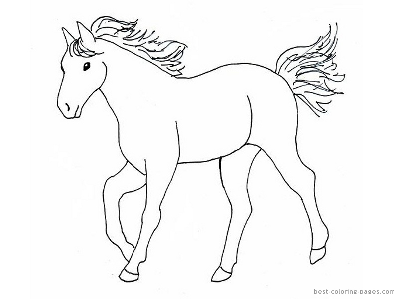 Pinto Horse Coloring Pages Best Coloring Pages - Free