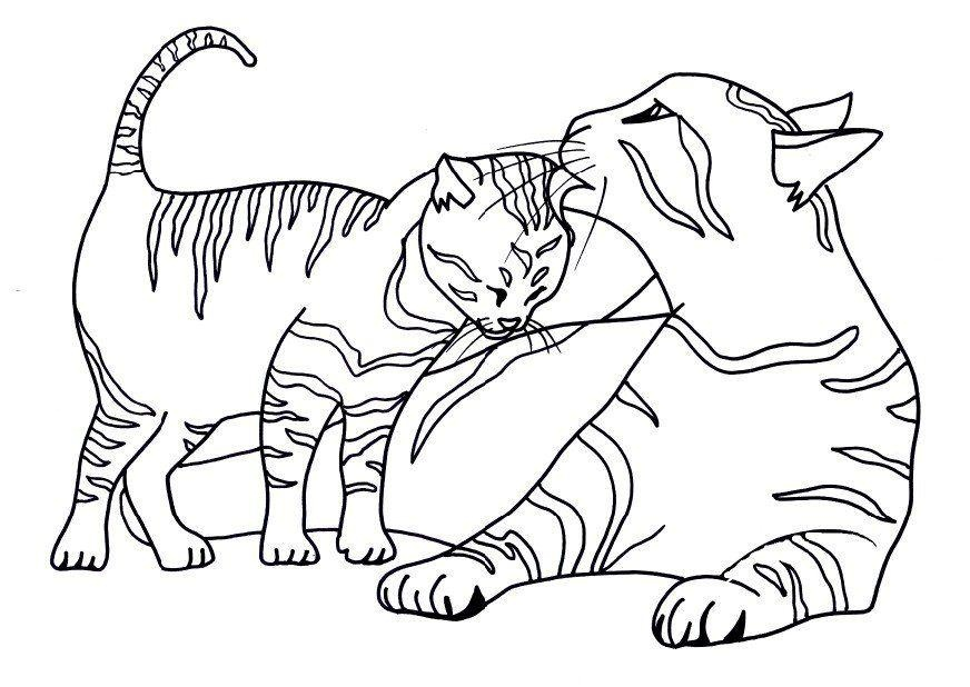 Black Cat Coloring Pages Halloween Printable Coloring