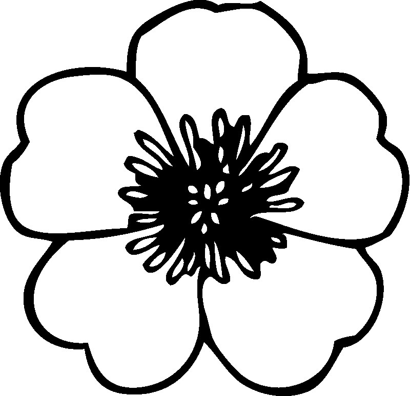pretty flowers coloring pages - photo#18