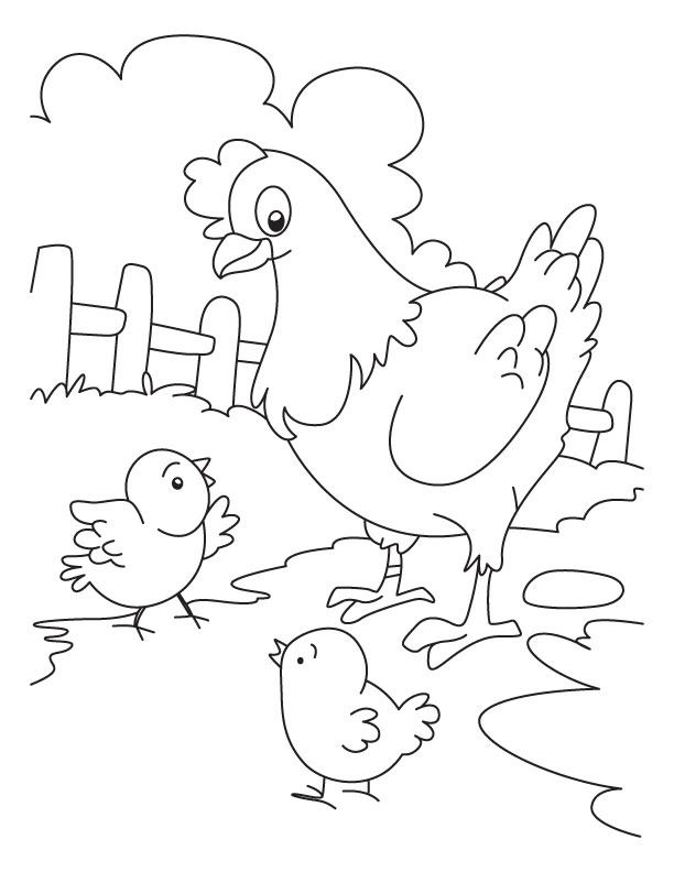 chicken coloring pages - photo#10