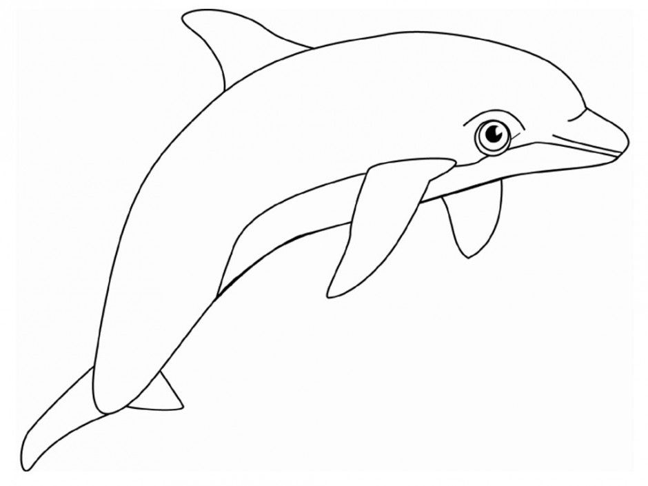 Dolphin Coloring Pages Pdf : Winter the dolphin coloring pages