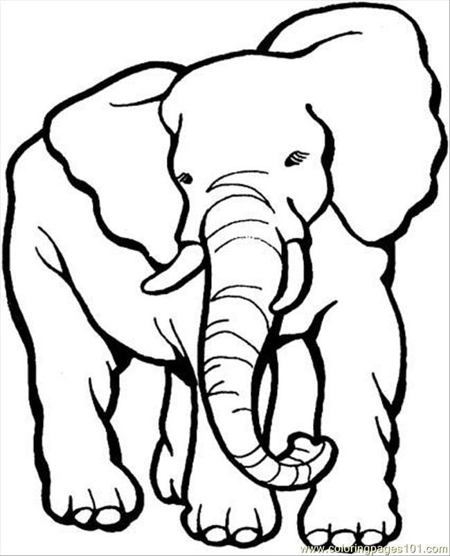 Elephant Coloring Printable Elephant Coloring