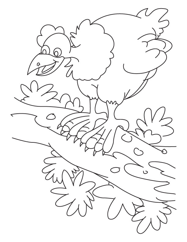 Hen clucking-noise making coloring pages | Download Free Hen