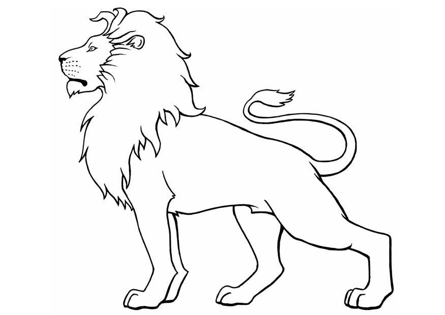 Lion Coloring Pages Pdf : Free printable lion coloring pages for kids az