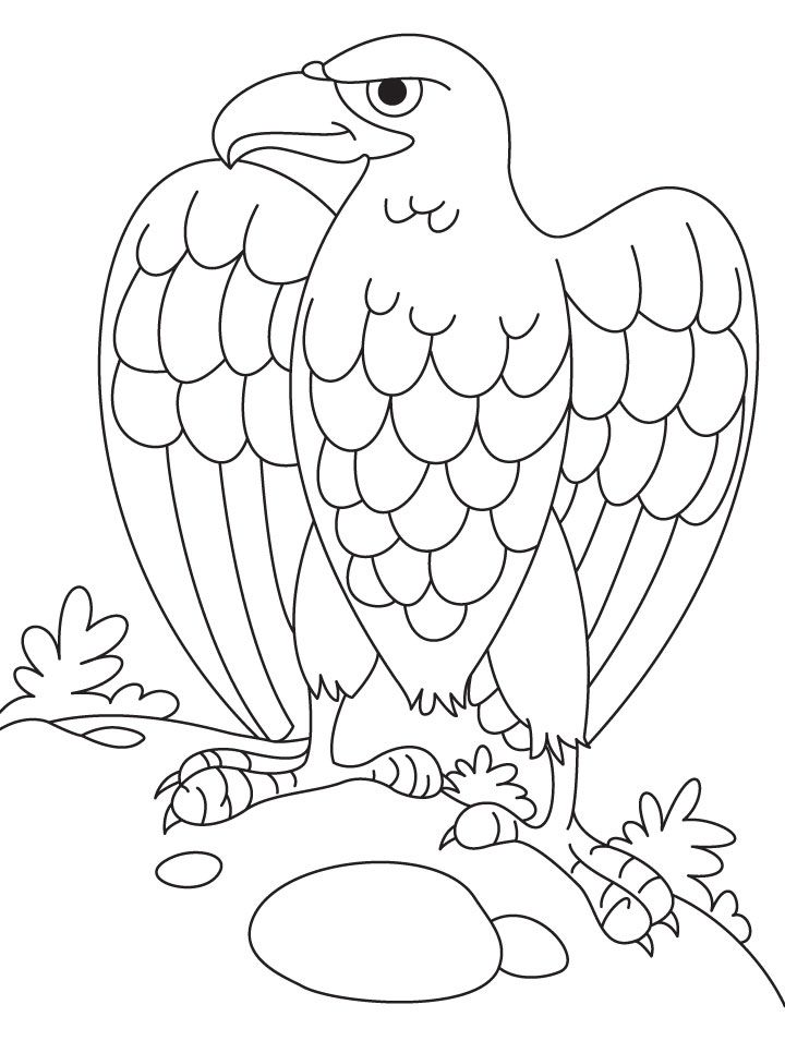 Bald Eagle Coloring Pages For Kids Coloring Home