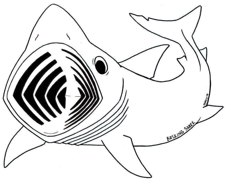 Coloring Pages Shark Coloring Home