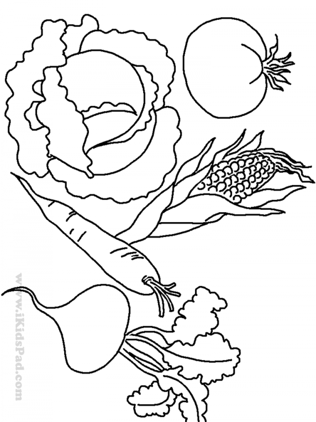 free pictures of fruits and vegetables coloring home