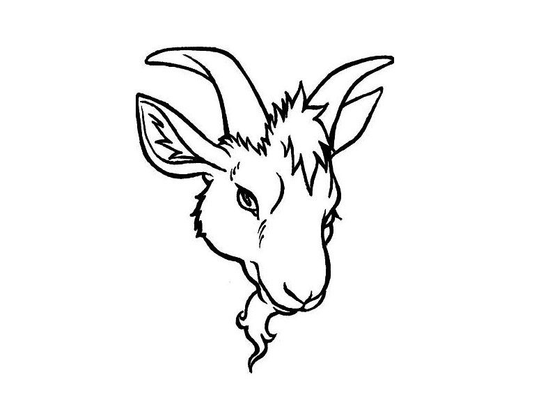 Image Of A Goat - AZ Coloring Pages Goat Face Side Drawing