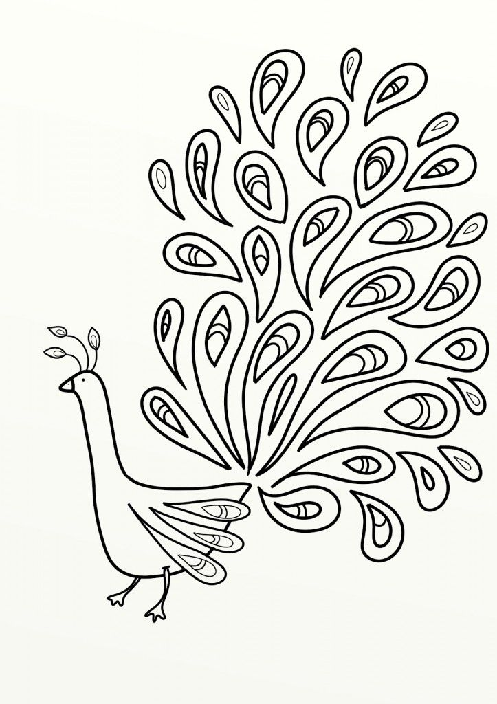 Peacock Birds Colouring Pages