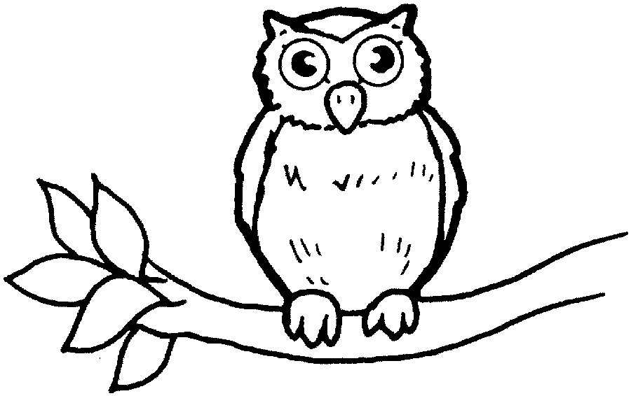 Free Owl Template Owl Coloring Pages Free