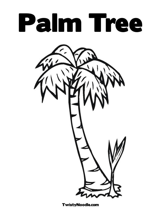 Coloring Pictures Palm Trees