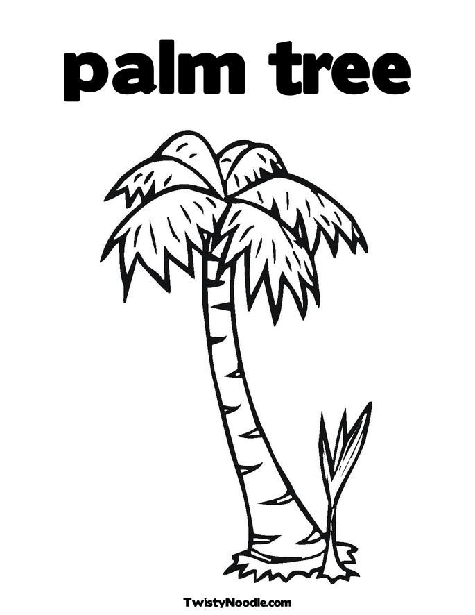 Cartoon Palm Tree Pictures Coloring Home Tree Coloring ñ A4 22 Pages