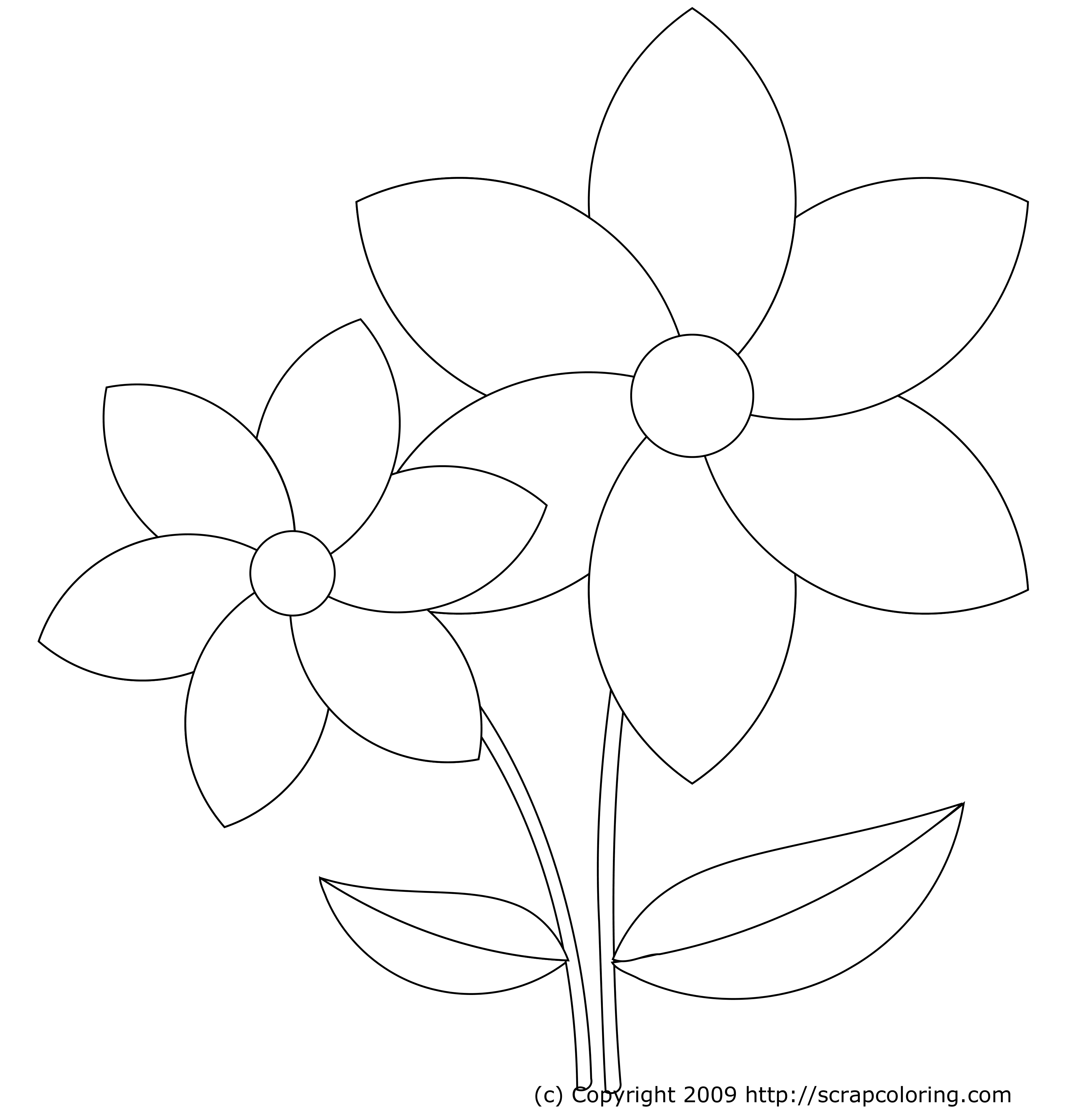 Easy Coloring Pages Of Flowers - High Quality Coloring Pages