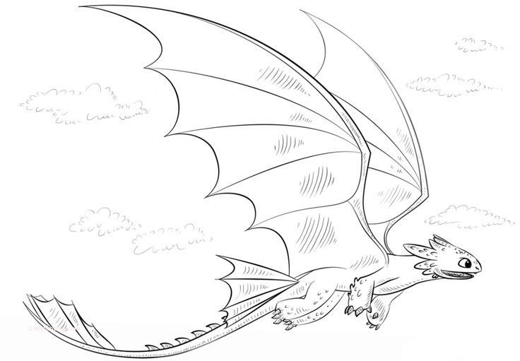 - Light Fury Coloring Pages - Coloring Home