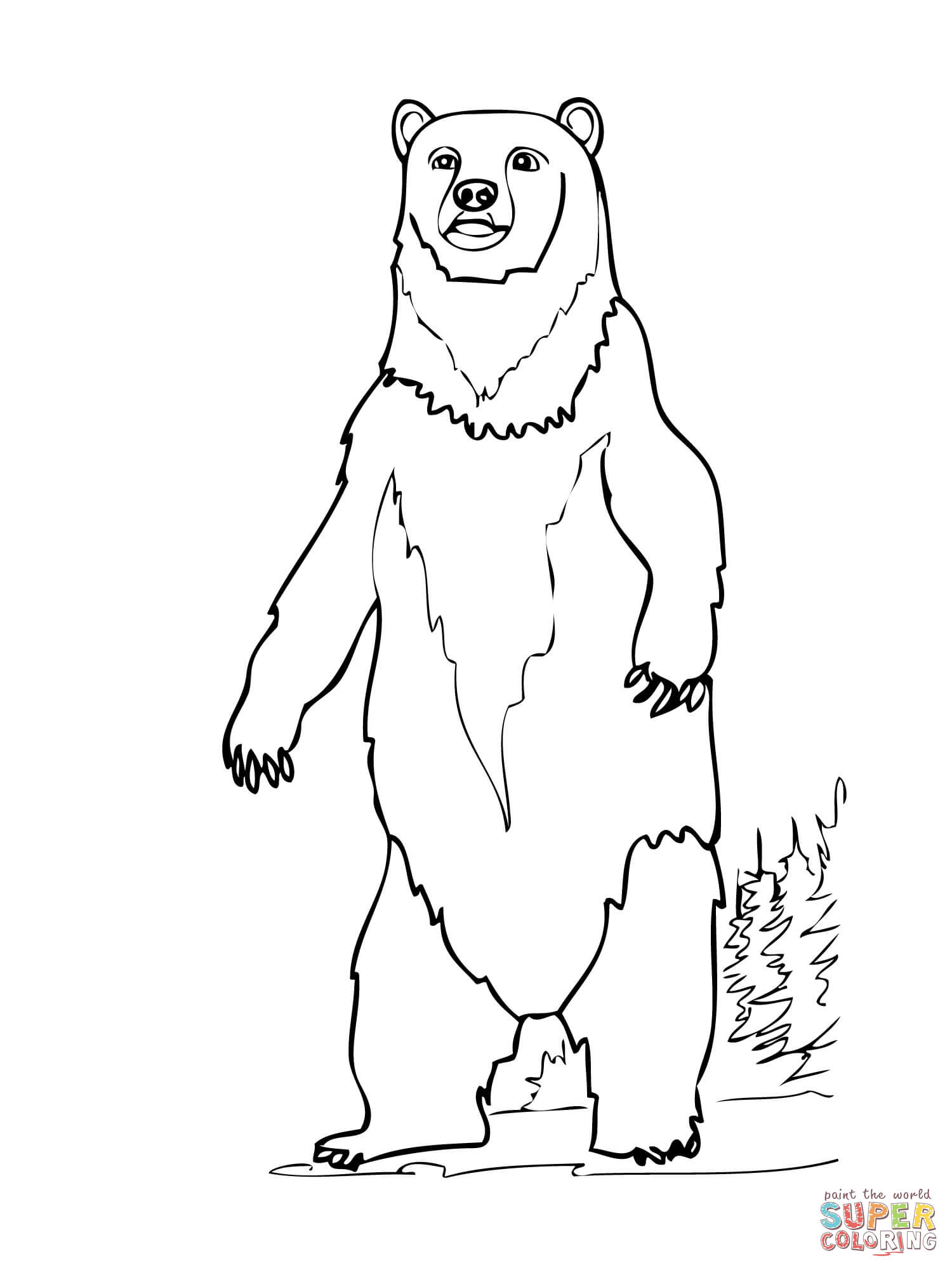 Brown Bear Standing Up Coloring Page  Free Printable Coloring