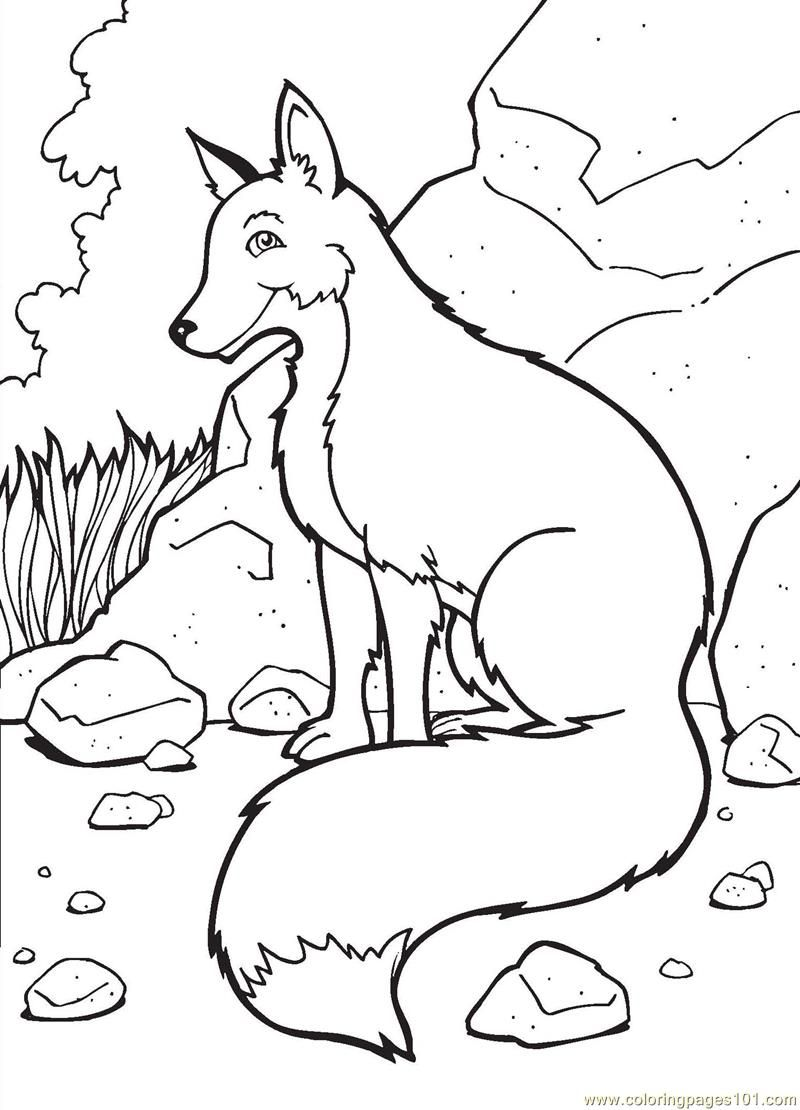 Foxes Coloring Pages - Coloring Home