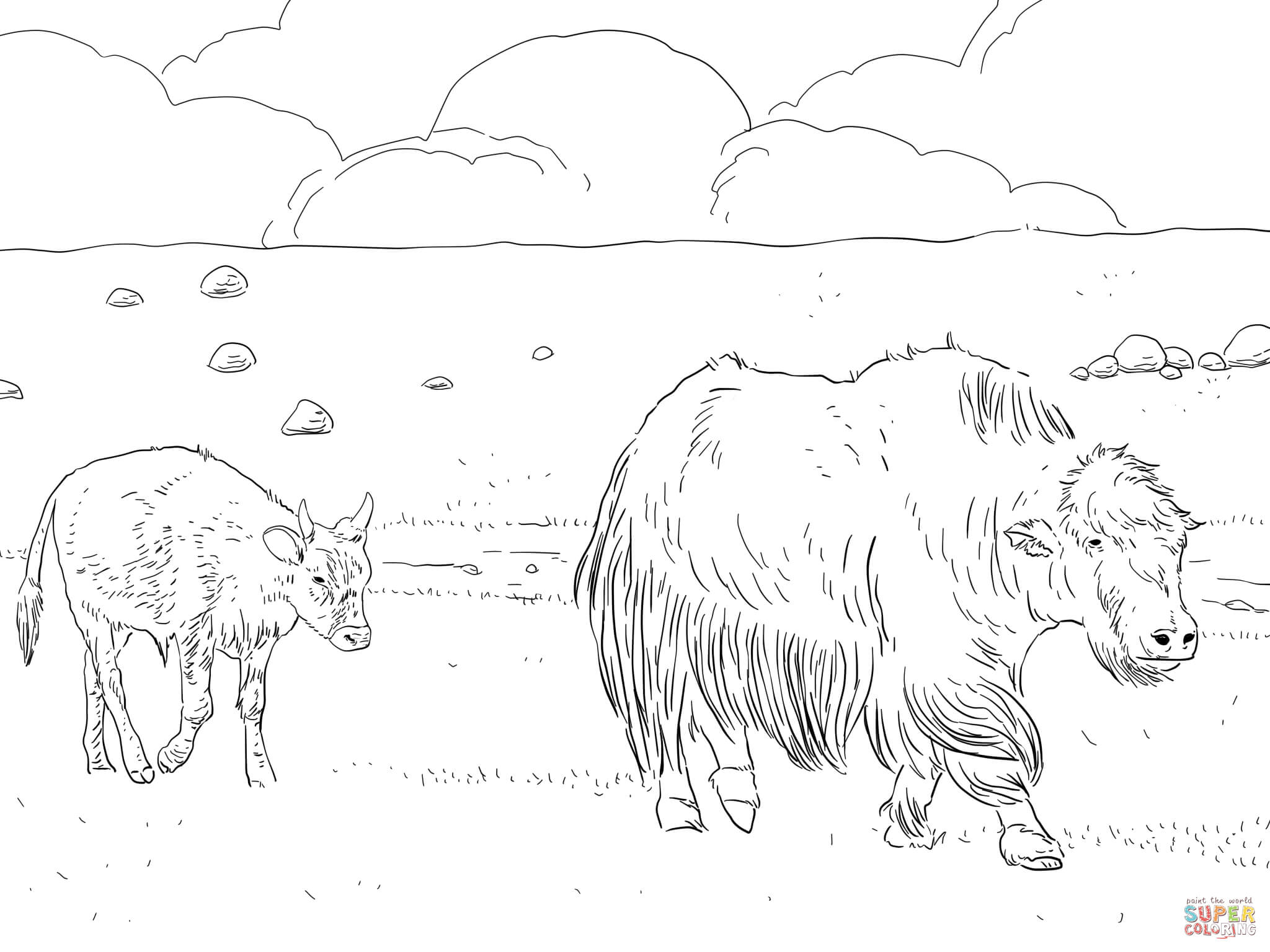 Yak Mother With Calf Coloring Page