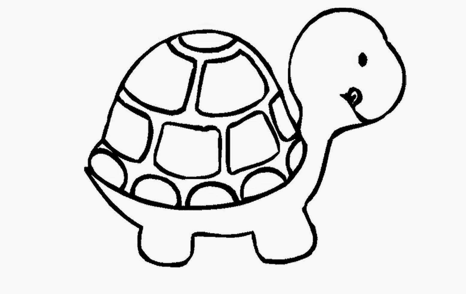 Free coloring pages of ninja turtles - Turtles Coloring Page Coloring Home