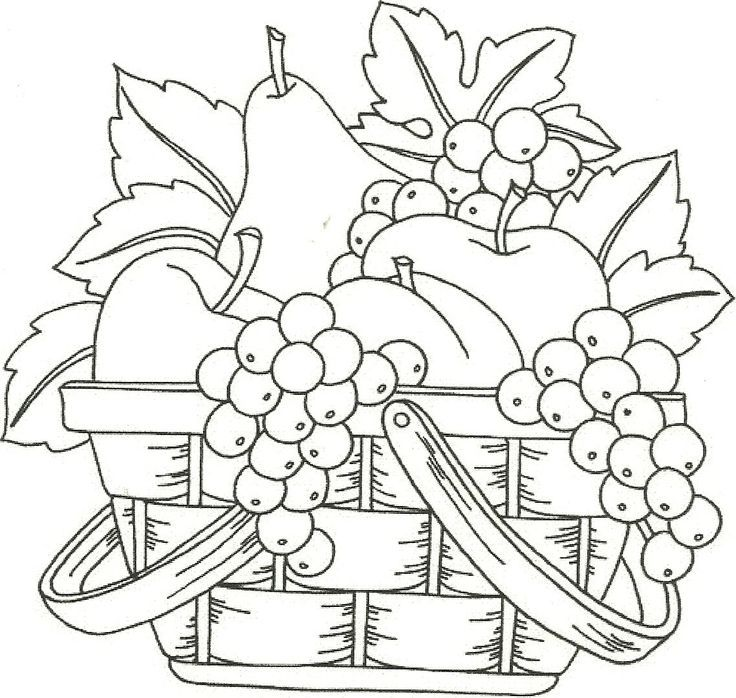 fruit coloring pages for adults coloring pages of fruits in a basket coloring home