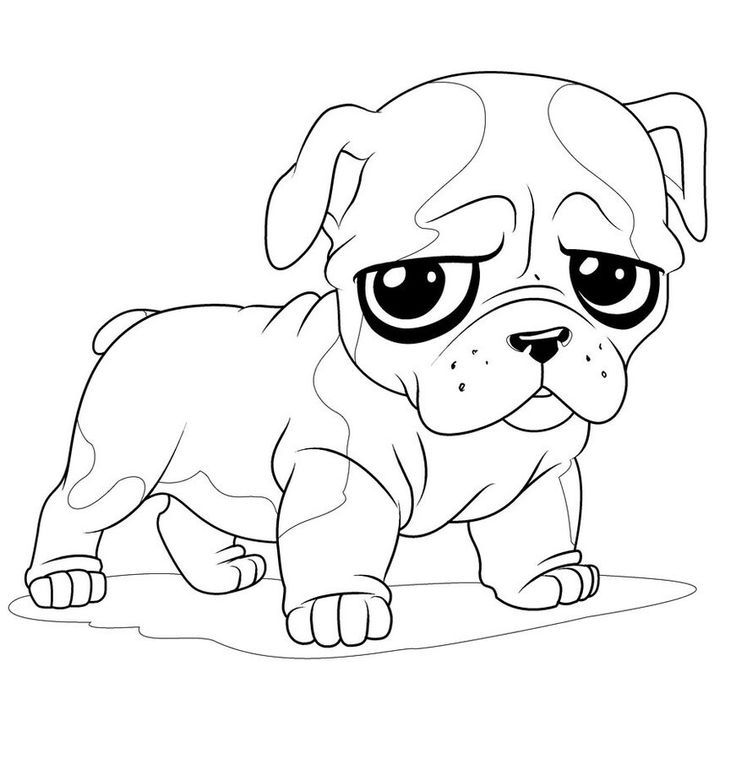 Printable pug coloring pages coloring home for Free printable bulldog coloring page