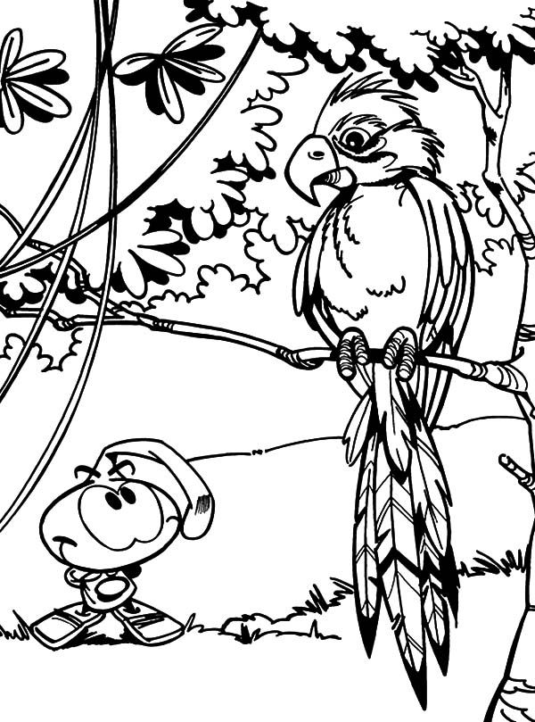 bird watching coloring pages - photo#16