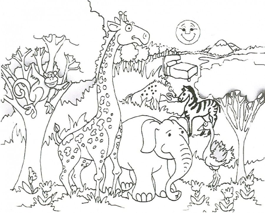 cute animals coloring pages cute zoo animals coloring pages. zoo ...