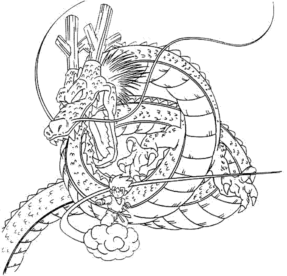 Dragon Coloring Pages For Adults Printable : Realistic Dragon Coloring Pages For Adults Coloring Home