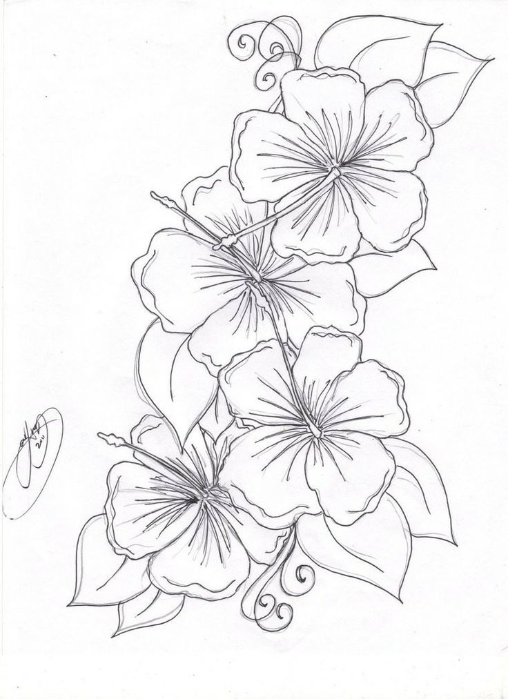 1000+ ideas about Flower Coloring Pages | Colouring ...