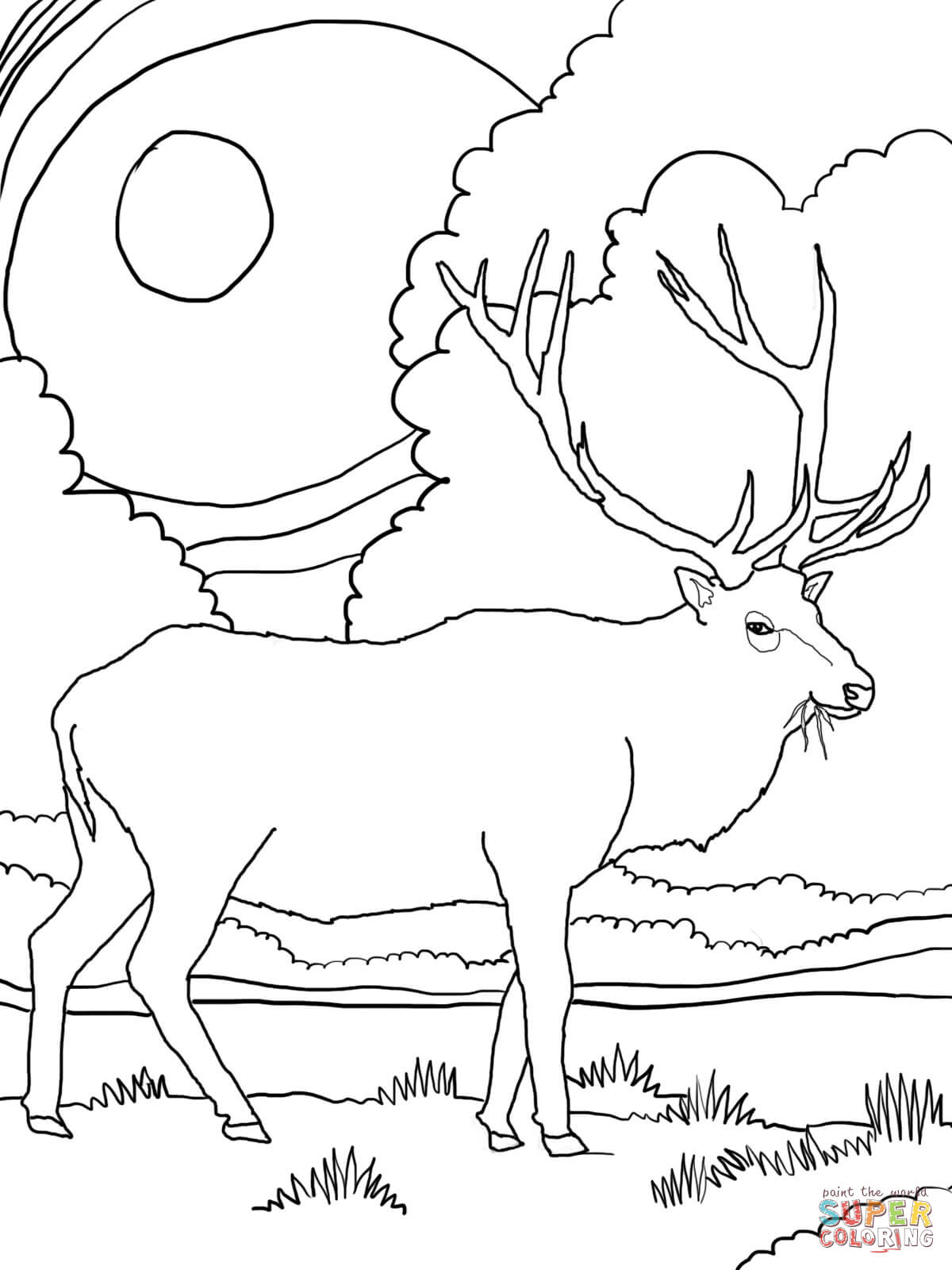rocky mountain elk coloring page free printable coloring pages - Mountain Coloring Pages Printable