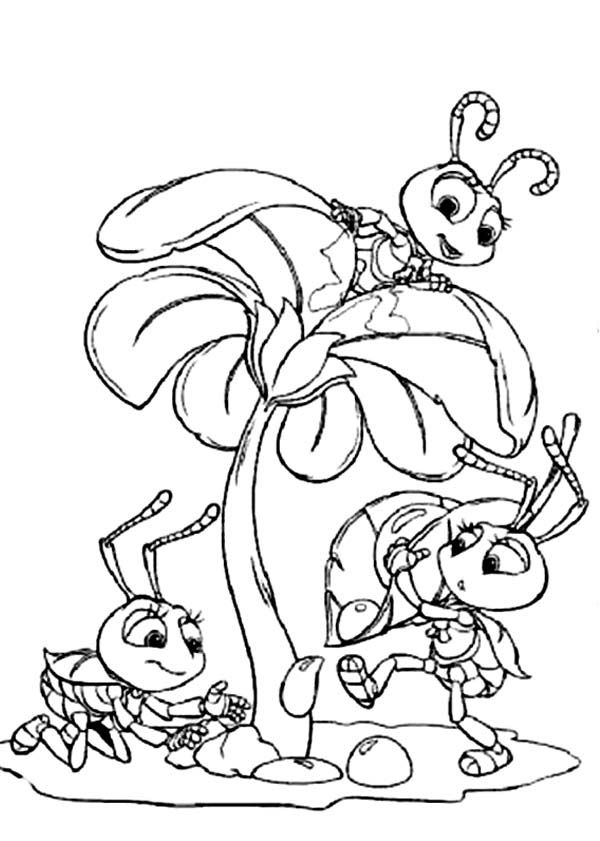 grasshopper and ant coloring pages - photo#12
