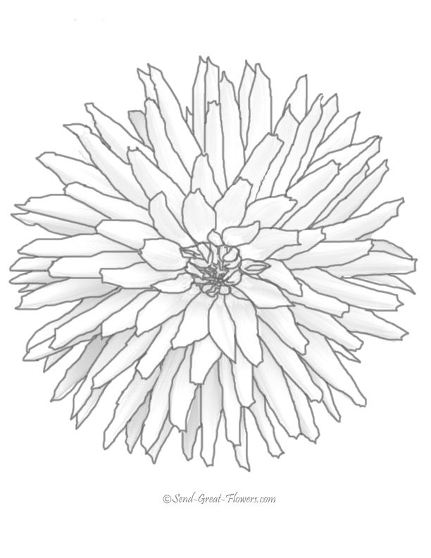 Difficult Flower - Coloring Pages for Kids and for Adults