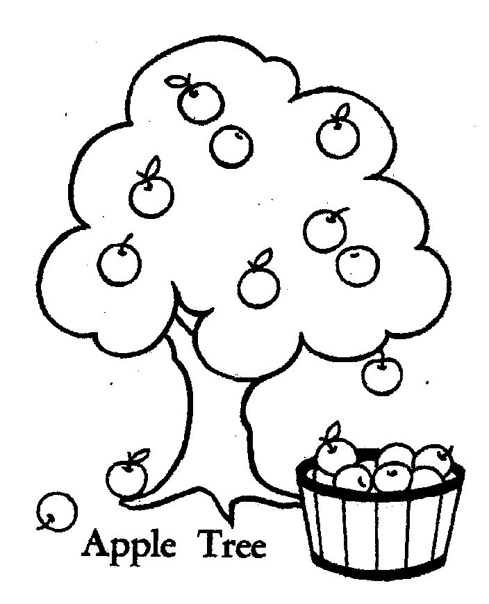 Apple Tree Pictures To Color Coloring Home Tree Coloring Page Mr Printables