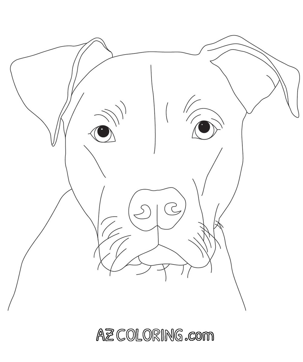 Coloring Page Of Pitbulls