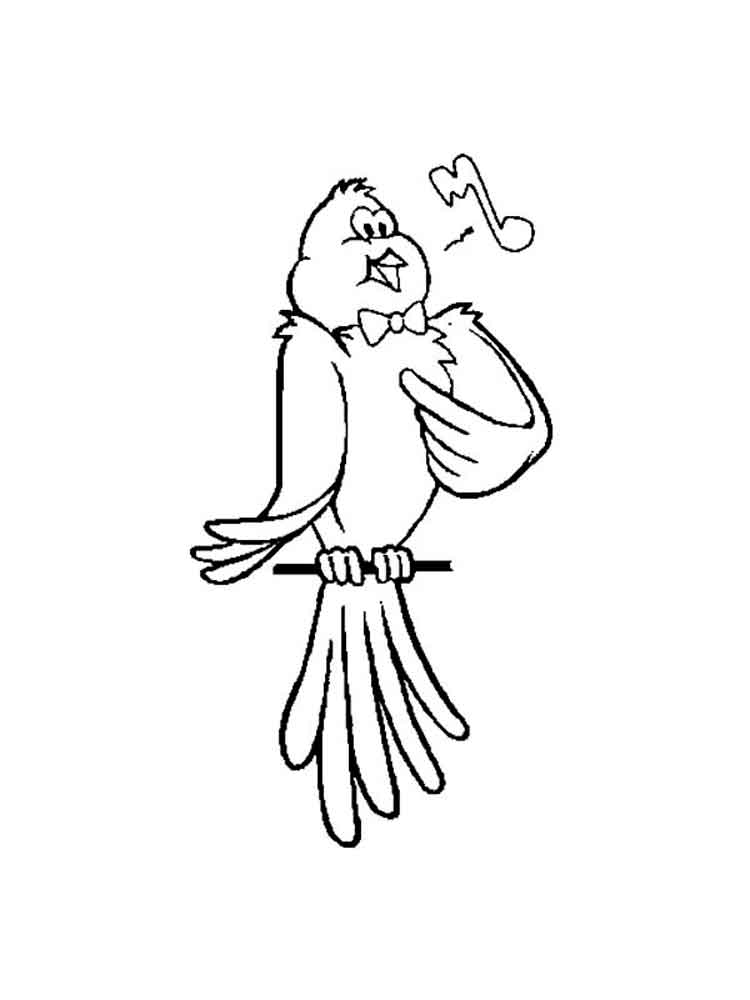 Canary Coloring Page Coloring