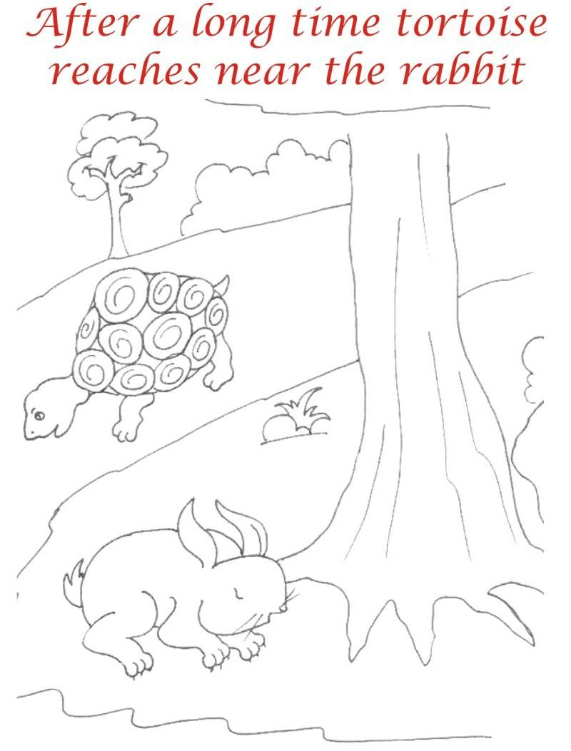 Uncategorized Tortoise And The Hare Coloring Page the rabbit and tortoise story coloring pages sketch page page