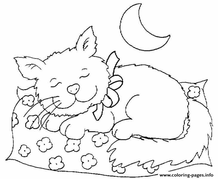 Cat Sleeping At Night 491f Coloring Pages Printable